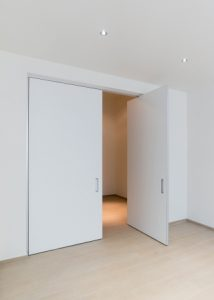 Interior Double pivot door